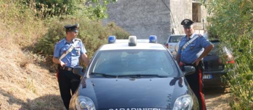 Cefalù, Salvatore Rinaudo ucciso dai cinghiali