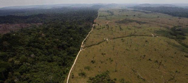 Fonte: http://veja.abril.com.br