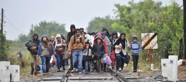 Uchodźcy na Węgrzech. Koncz György / Népszabadság