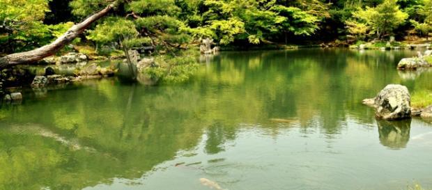 Powódź stulecia. Tokio i okolice pod wodą.