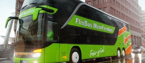 autobuses cómodos para nuestras vacaciones