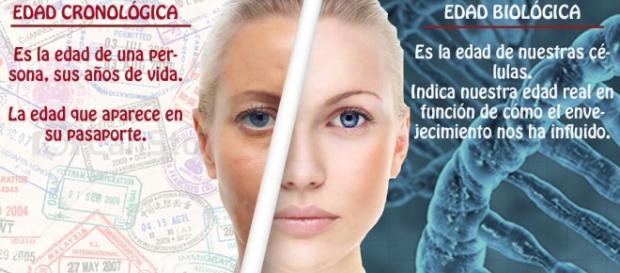 Edad cronológica y biológica: análisis de sangre