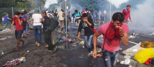 Violenţe la graniţa ungaro-sârbă