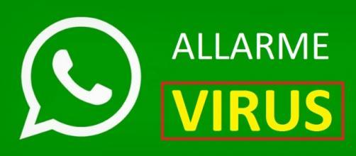 Pericoloso virus infetta WhatsApp