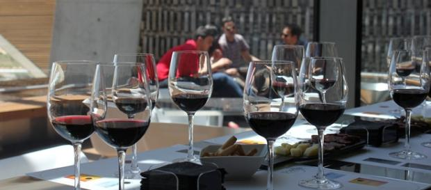 Las catas de vino se realizan en las bodegas