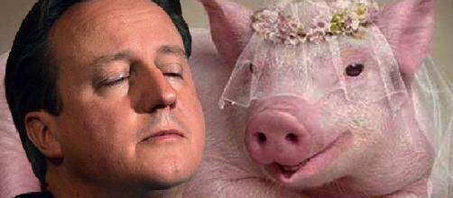 David Cameron, primer ministro de Inglaterra.