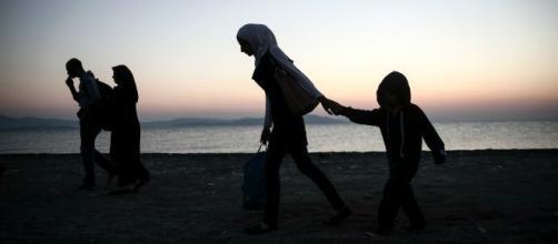 New arrivals on the greek coast