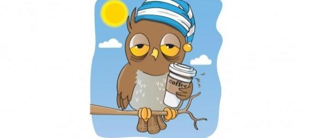 El café y el ritmo circadiano del sueño