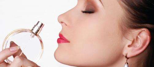Perder el olfato; reducir la esperanza de vida