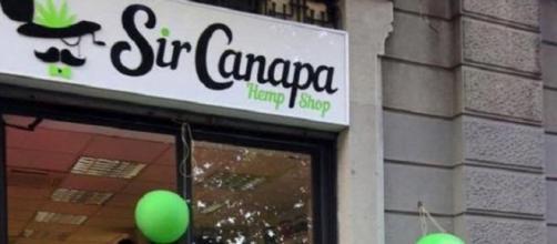 Sir Canapa, negozio di prodotti a base di canapa.