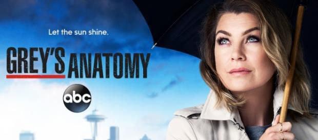 Grey's Anatomy: 12ª temporada estreia hoje