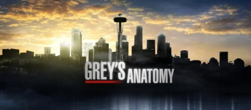 Anticipazioni Grey's Anatomy 12x02