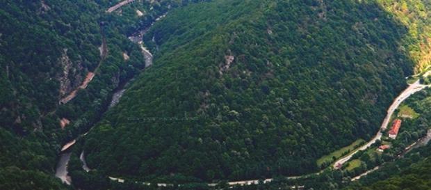 Valea Jiului, în pericol, spun biologii