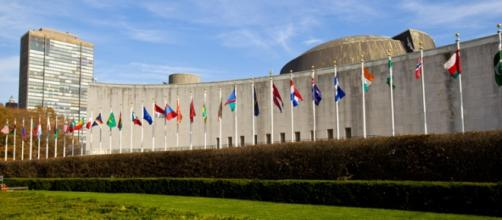 Día internacional del Derecho a Saber