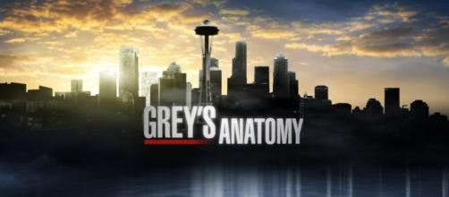 Grey's Anatomy 12: news prime due puntate