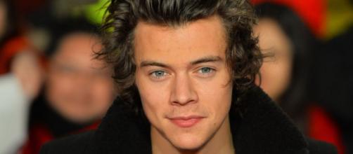 Harry Styles confessa ter muita roupa que não usa.