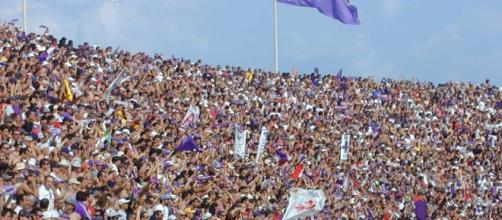 tifosi della Fiorentina allo stadio