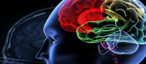 Documenti validi nei casi di psichiatria al T.d.M