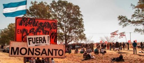 El acampe que derrotó a Monsanto y sus esbirros