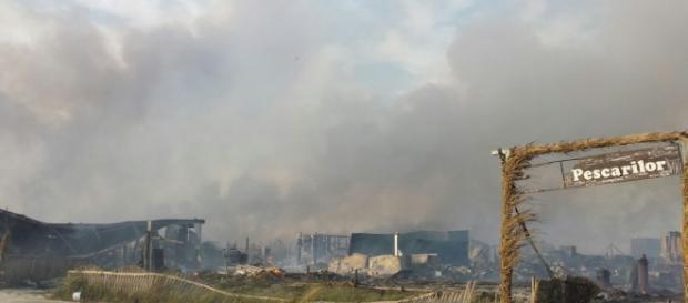 Incendiu devastator a ras rezervația Delta Dunării