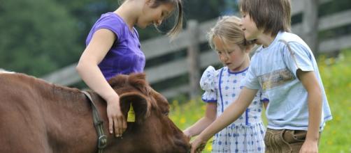 Alergias y niños de campos y granjas