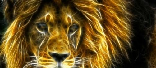 sporting luta com garra leonina e vence, sempre.