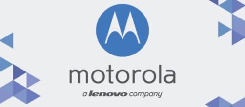 Motorola: Lettore d'impronte nel 2016 su terminali