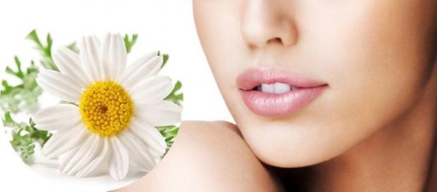 Mantener la piel perfecta con manzanilla