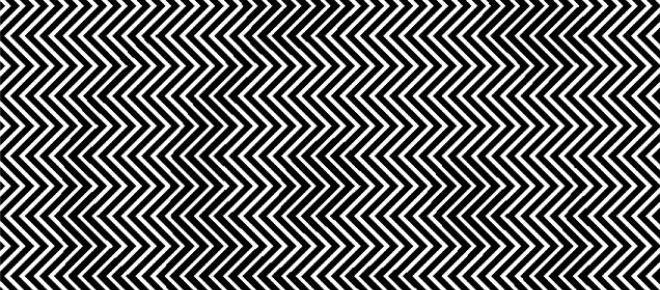 Consegue ver o animal escondido na imagem a preto e branco?