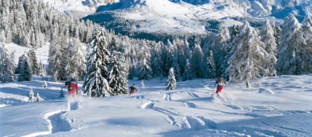 Il bianco della neve e l'azzurro del cielo.