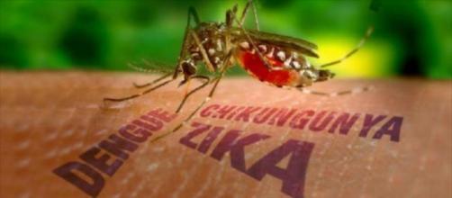 Virus zika y Síndrome de Guillain-Barré