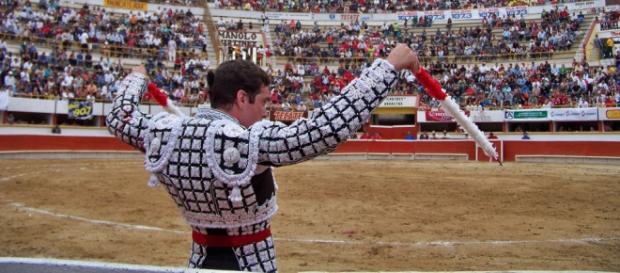 Se podrán denunciar imágenes de corridas de toros