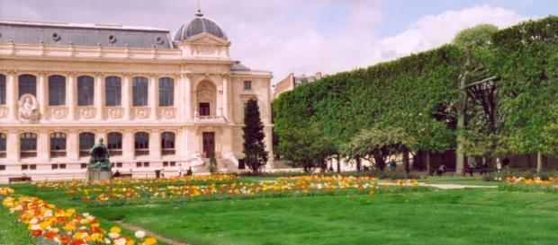 Vista del jardín botánico y el museo