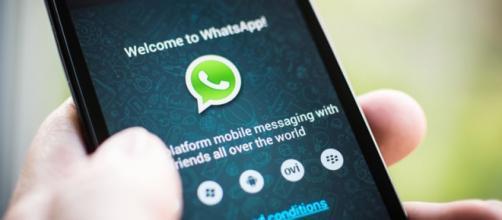 Agora sim, WhatsApp é totalmente gratuito