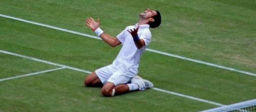ATP Nо. 1 Novak Djоkоvіс (Wikipedia)