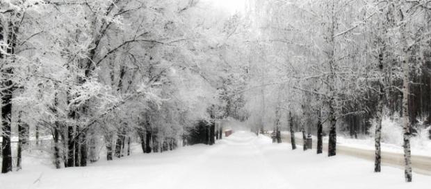 Neve in Italia, foto di meteolive