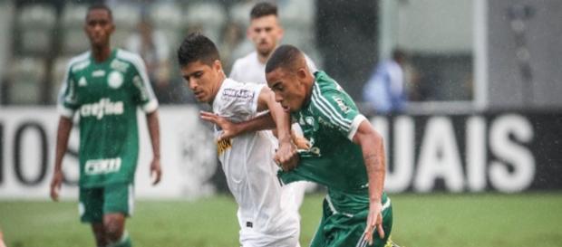 O destaque do Palmeiras: Gabriel de Jesus