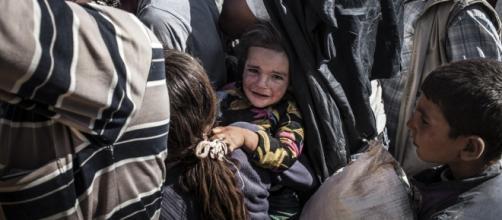 Refugiados sirios esperando asilo