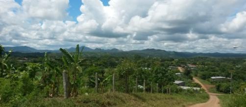 Nelle zone umide prolifereno le zanzare