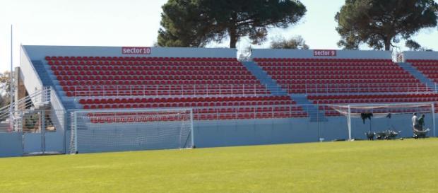 Vicente Feijó fez a formação no SL Benfica.