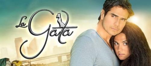 Daniel Arenas e Maite Perroni na novela 'La Gata'