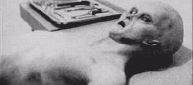 La presunta foto di un alieno morto