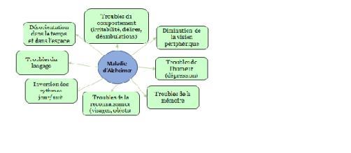 1 : Principaux symptômes de la maladie d'Alzheimer