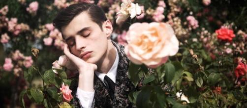 Chico adormilado rodeado de rosas.