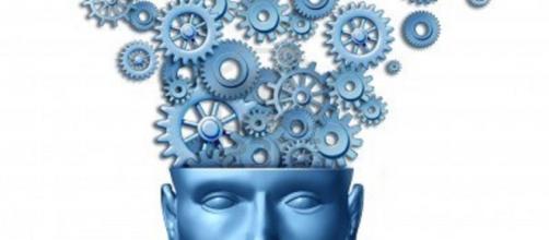 Curiosidades que te encantarán sobre el cerebro