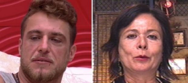Daniel ou Harumi - Foto/Montagem: TV Globo