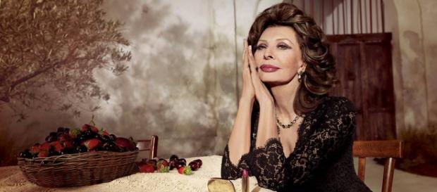 Imagen: Sophia Loren Nº1 | Dolce & Gabbana