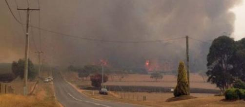Incendios en Tasmania (foto: ABC news)