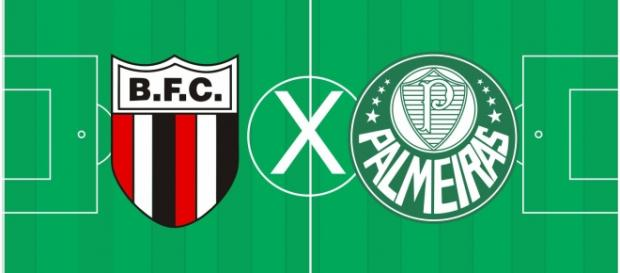 Botafogo de Ribeirão Preto e Palmeiras
