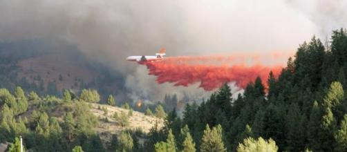 Firefighting in Malheur National Forest